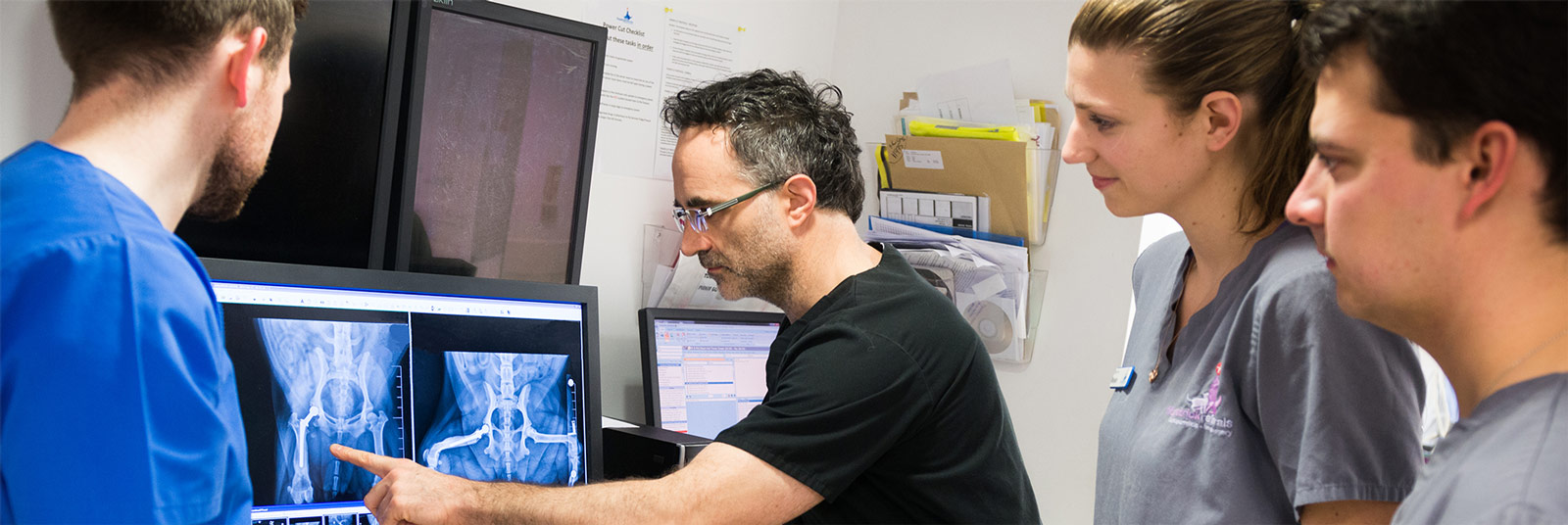 Noel talking through a radiograph