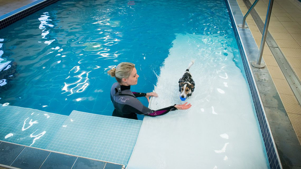 Hydrotherapy Fitzpatrick Referrals