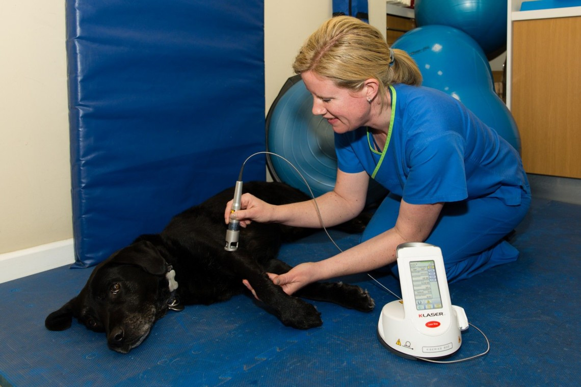 Laser therapy being performed by Fiona one of our chartered physiotherapists