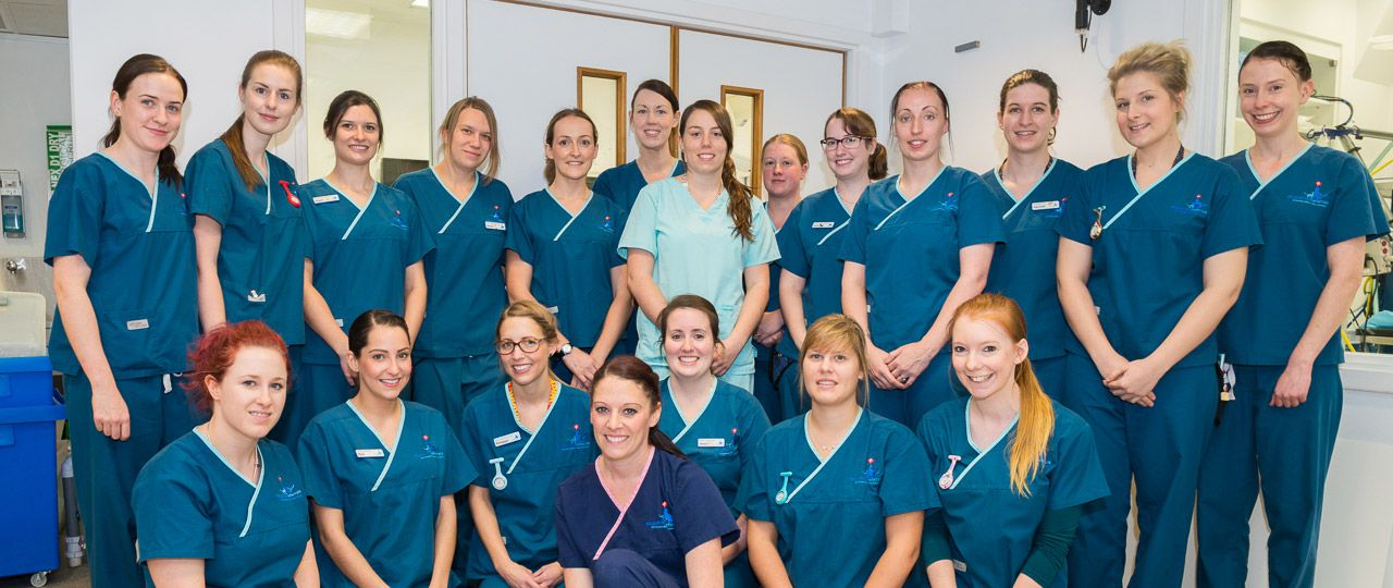 Fitzpatrick Referrals Orthopaedics and Neurology Hospital Nurse Team 2015