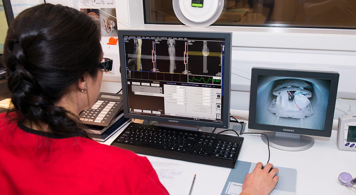 Radiographer looking at CT scans at Fitzpatrick Referrals Orthopaedics and Neurology Hospital Eashing