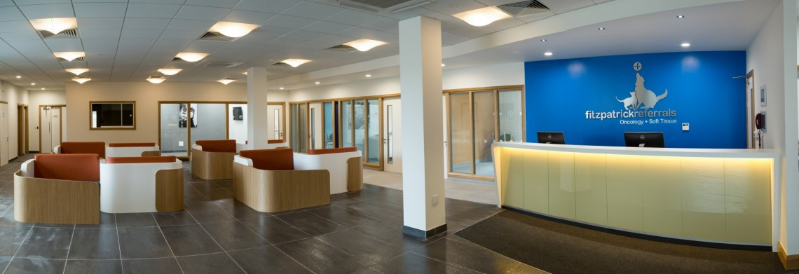 The warm and open reception area at the Fitzpatrick Referrals Oncology and Soft Tissue Centre