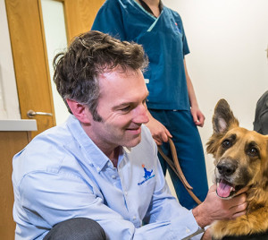 Dr Nick Bacon Senior Clinician at Fitzpatrick Referrals Oncology and Soft Tissue Hospital