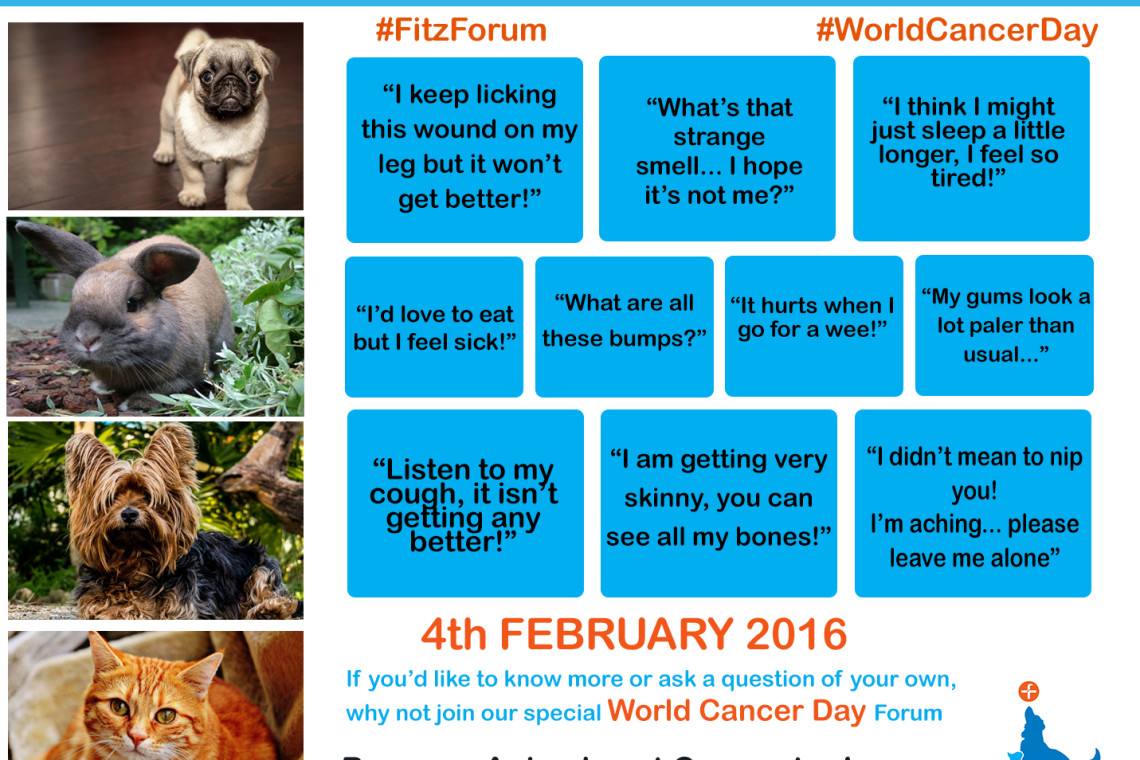 10 Things your animal would say if they had Cancer WCD16