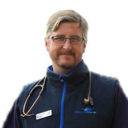 Dr. Diego Castineiras Anaesthetist / DVM MVetMed MRCVS