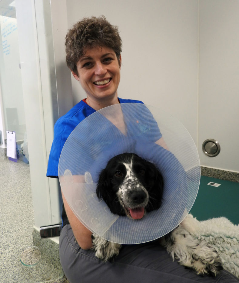 Clare Rusbridge with a dog at Fitzpatrick Referrals