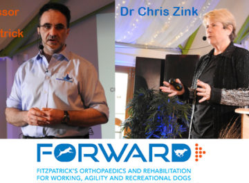 Noel Fitzpatrick with Chris Zink talking about FORWARD