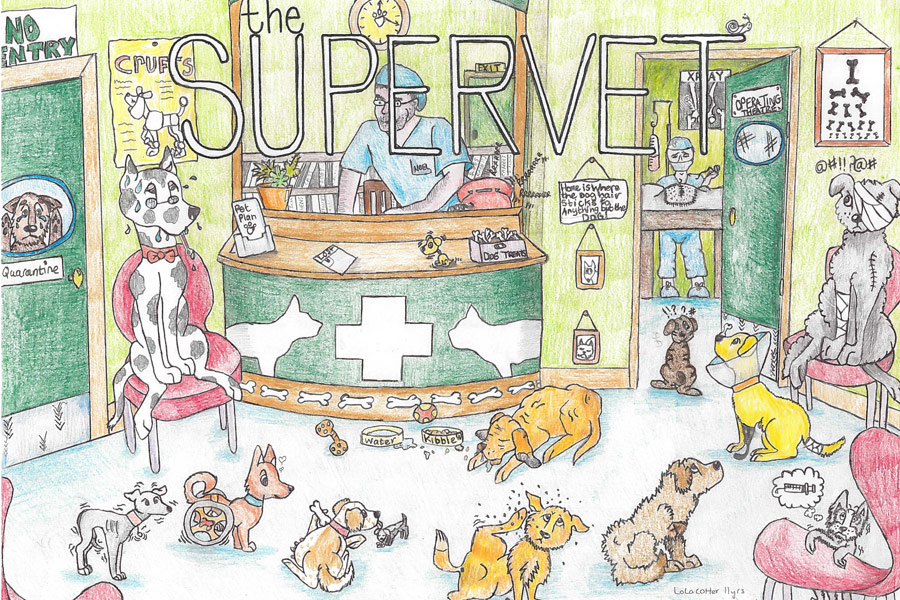 supervet-drawing