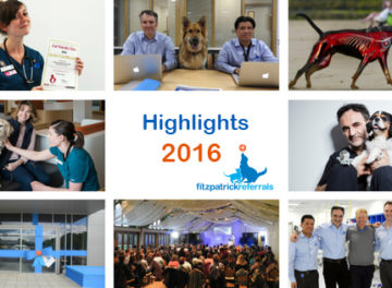 Highlights of 2016