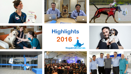 Highlights of 2016