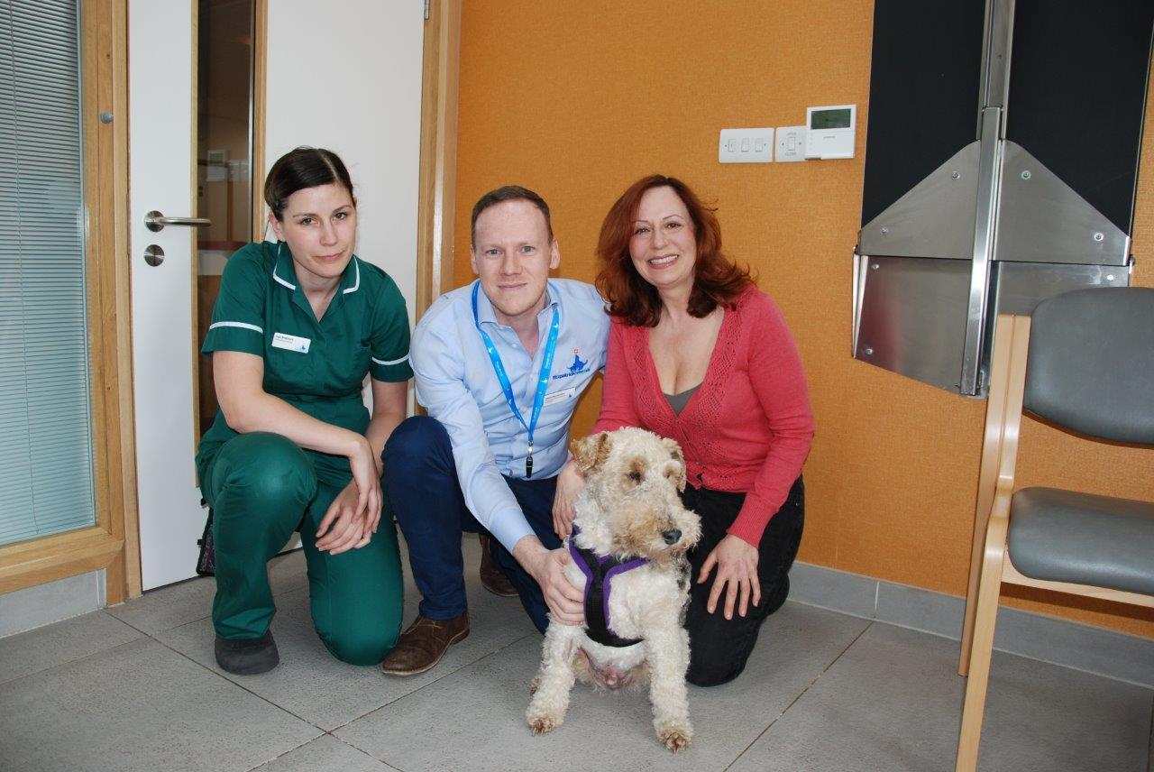 Rags after surgery at Fitzpatrick Referrals