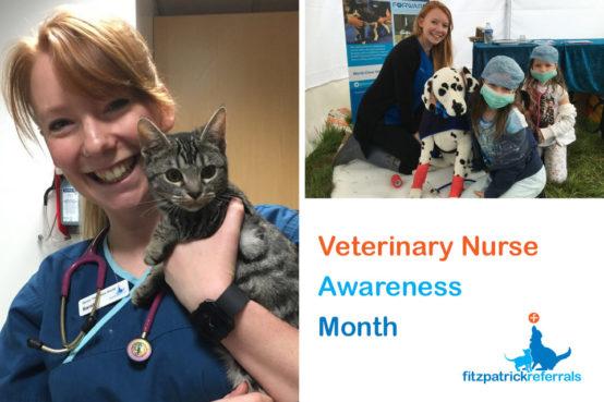 Senior Veterinary Nurse Sarah King