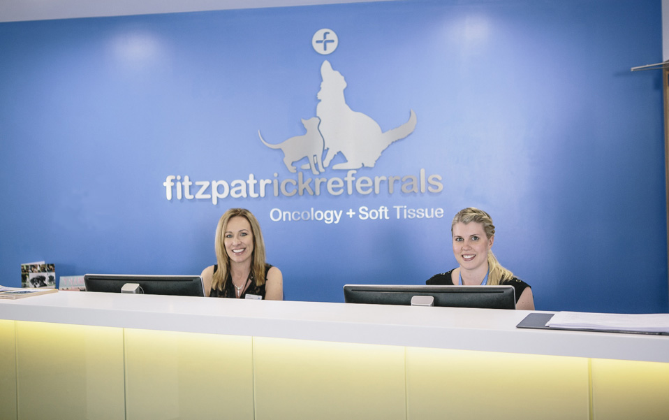 Reception at Fitzpatrick Referrals Oncology & Soft Tissue