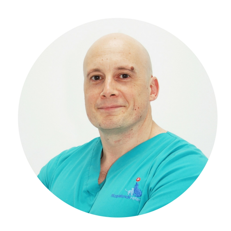 Dr Laurent Findji, Senior Surgeon Oncology & Soft Tissue, Fitzpatrick Referrals