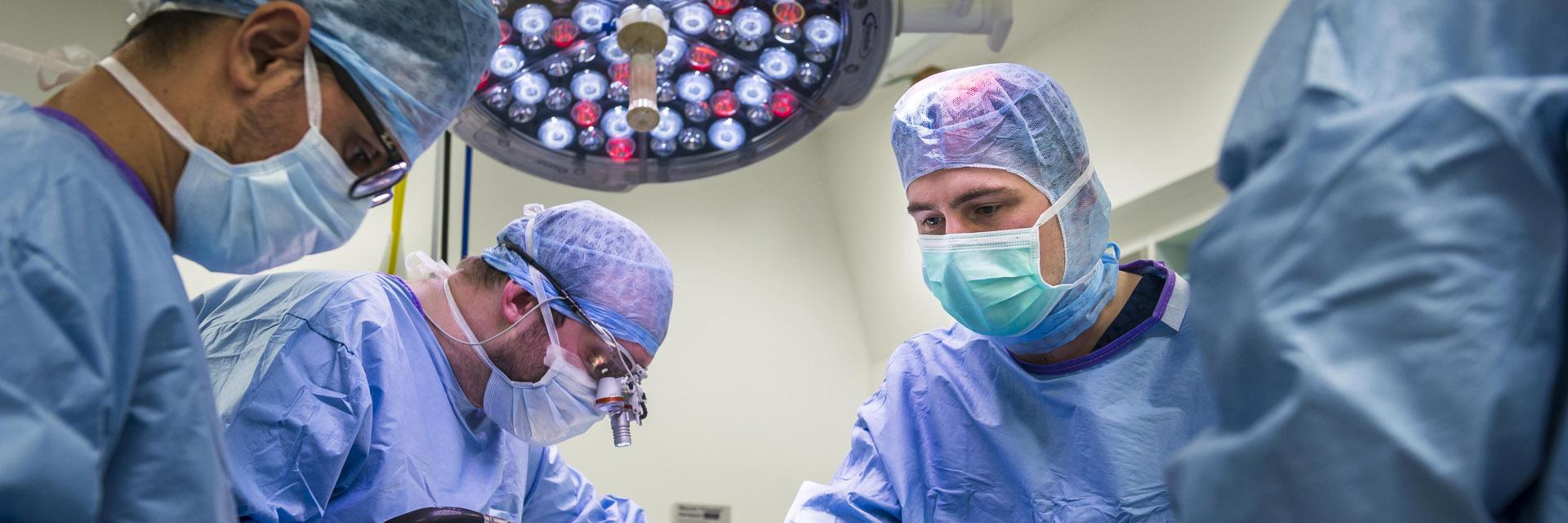 Fitzpatrick Referrals Neurology Team in Surgery