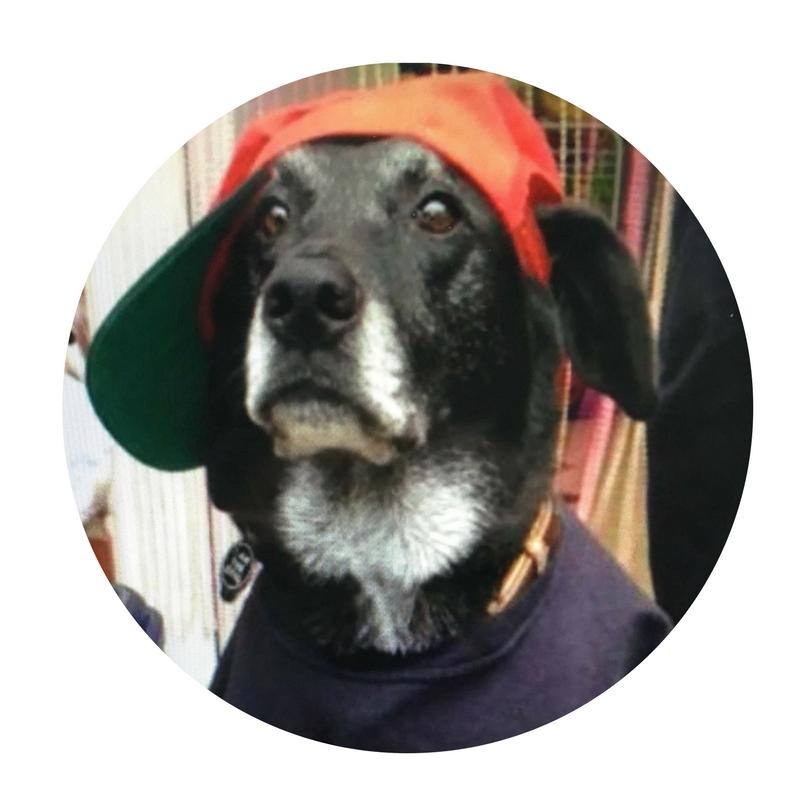 Ozzy in baseball cap