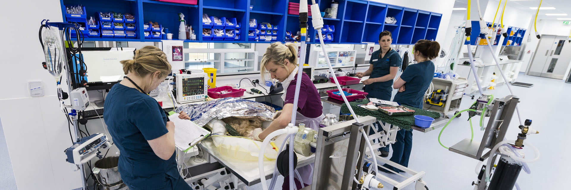 Veterinary nursing and auxiliary team in prep at Fitzpatrick Referrals Oncology and Soft Tissue Hospital Guildford