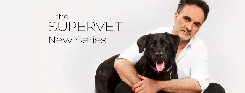 The Supervet announcement 2018 series 11 Fitzpatrick Referrals