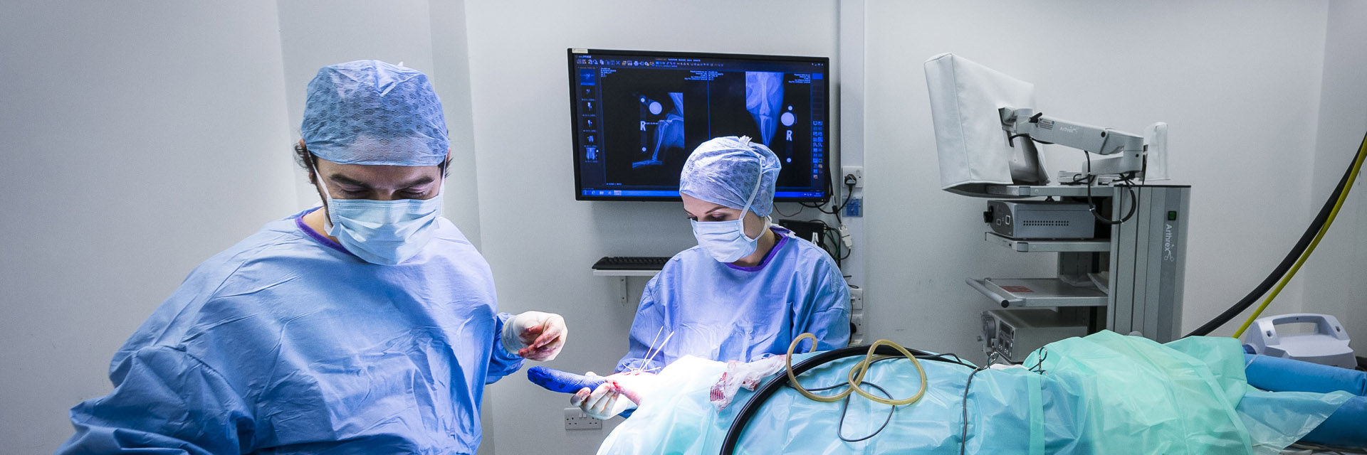 Dr Miguel Solano in surgery at Fitzpatrick Referrals.