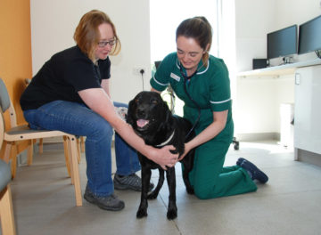 Senior Nurse Clinician Jessica Barnes checking a patient's heart rate at Fitzpatrick Referrals Oncology and Soft Tissue