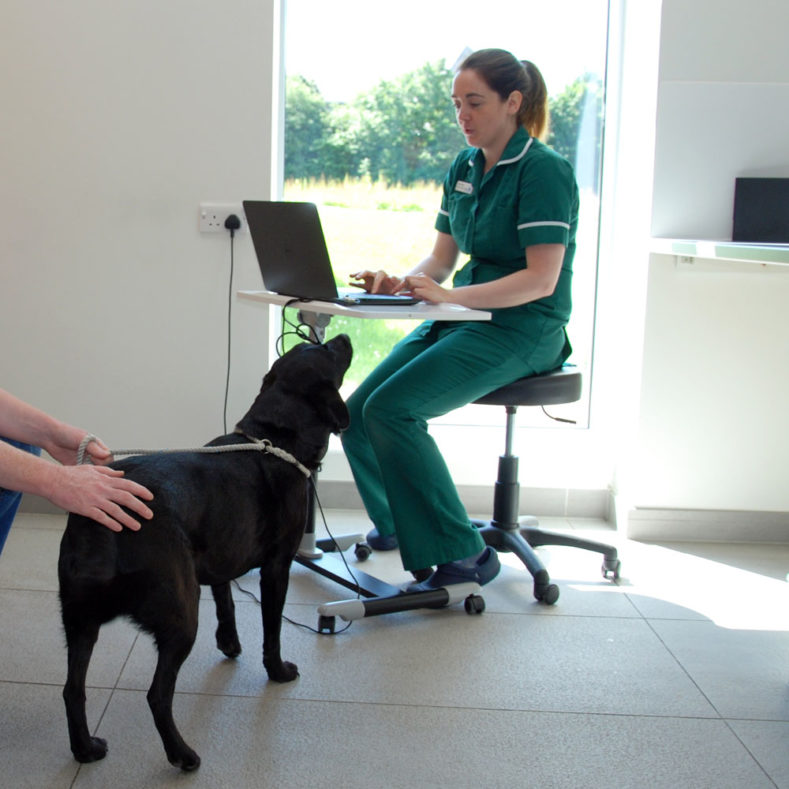 Senior Nurse Clinician Jessica Barnes in consult at Fitzpatrick Referrals Oncology and Soft Tissue