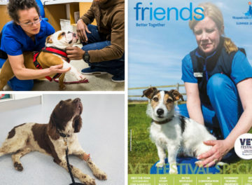 Fitzpatrick Referrals Friends Newsletter VET Festival special 2018