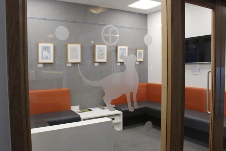 Cat waiting room at Fitzpatrick Referrals Oncology & Soft Tissue