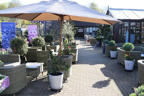Squires Garden Centre Cafe Milford