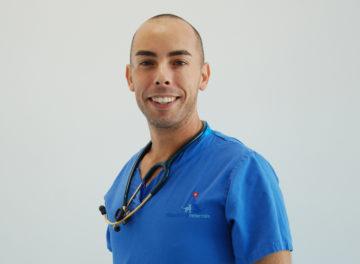 Enzo Minghella Specialist in Veterinary Anaesthesia at Fitzpatrick Referrals