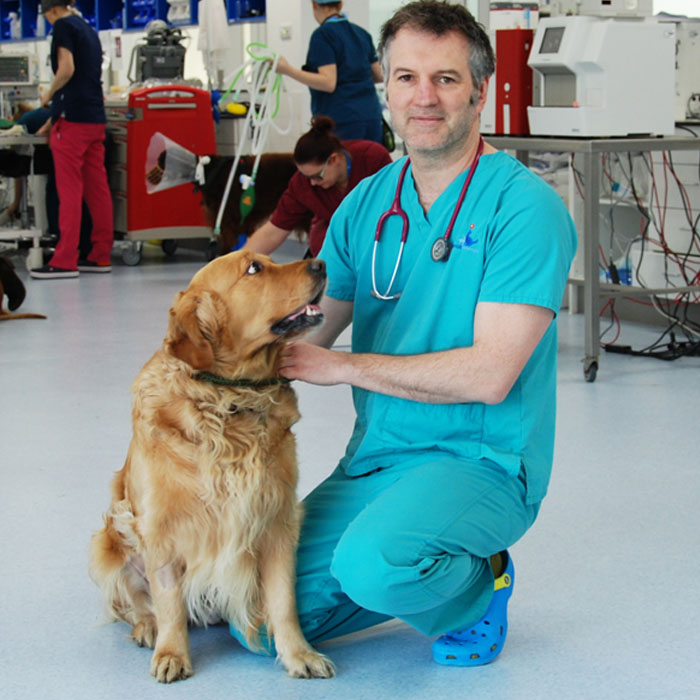Professor Nick Bacon and patient Willow at Fitzpatrick Referrals Oncology and Soft Tissue