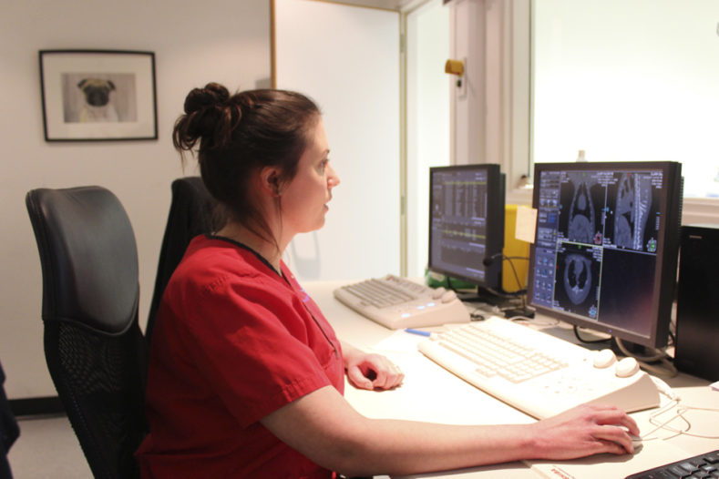 Radiographer Felicity Stringer analysing scans