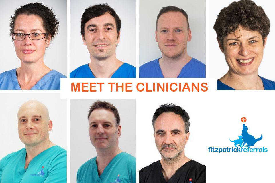 Meet the clinicians at Fitzpatrick Referrals