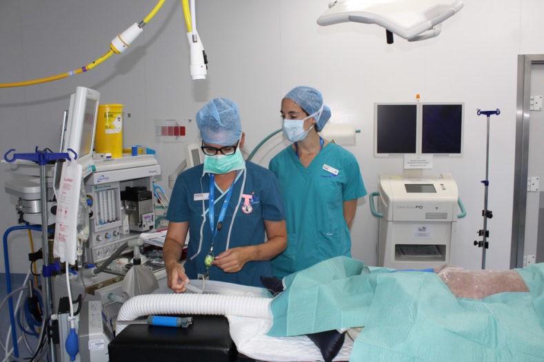 Anaesthetist in theatre with a patient being prepped for surgery at Fitzpatrick Referrals