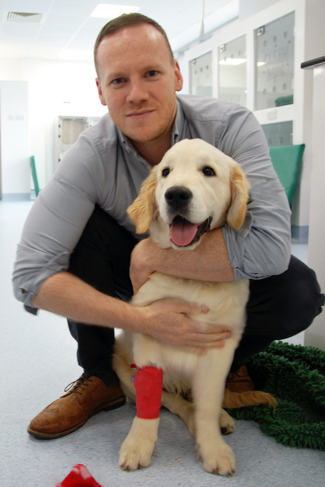 Surgeon Gerard McLauchlan with canine patient