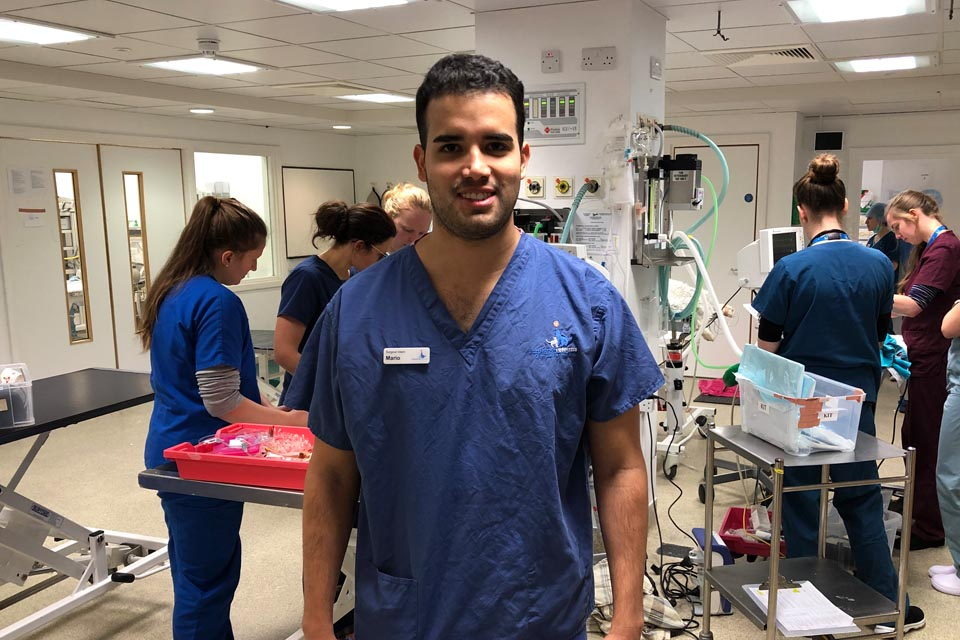 Intern Mario Garcia in the prep room at Fitzpatrick Referrals Orthopaedics and Neurology