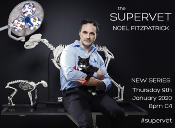 The Supervet Noel Fitzpatrick with cat - series 15 announcement