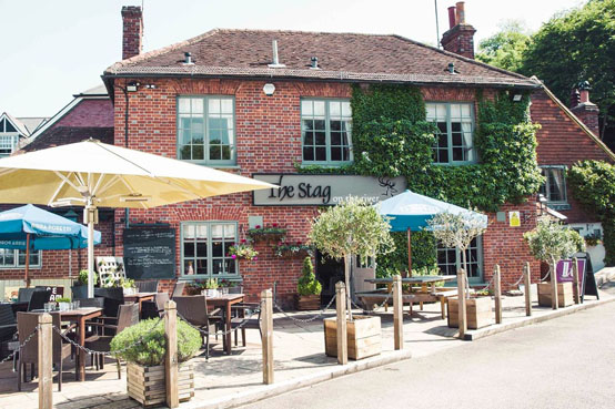 Local places to stay - Stag on the River Eashing